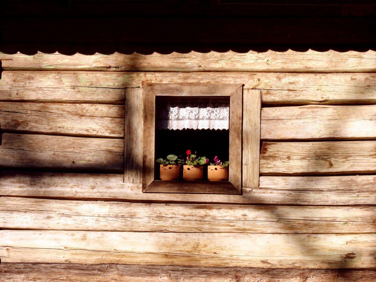 Całoroczne domy z bali